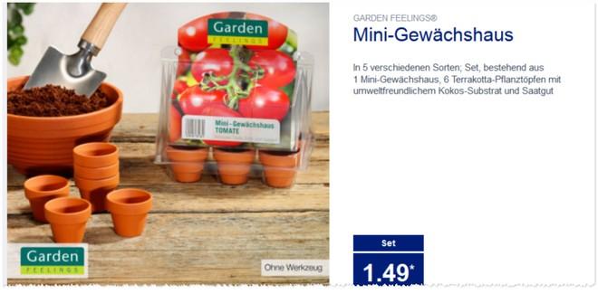 Mini Gewächshaus Set von Garden Feelings
